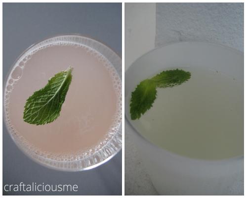 rhabarer sirup | mint sirup by craftaliciousme