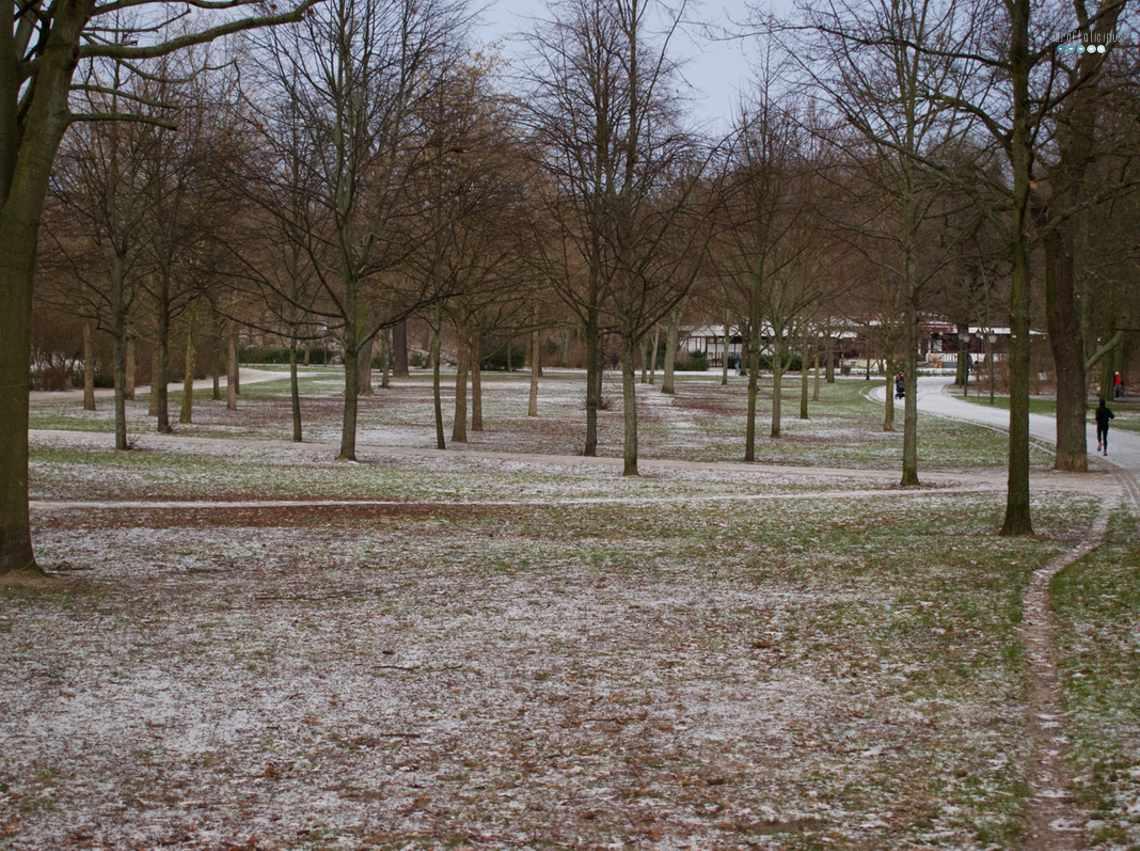 park life january