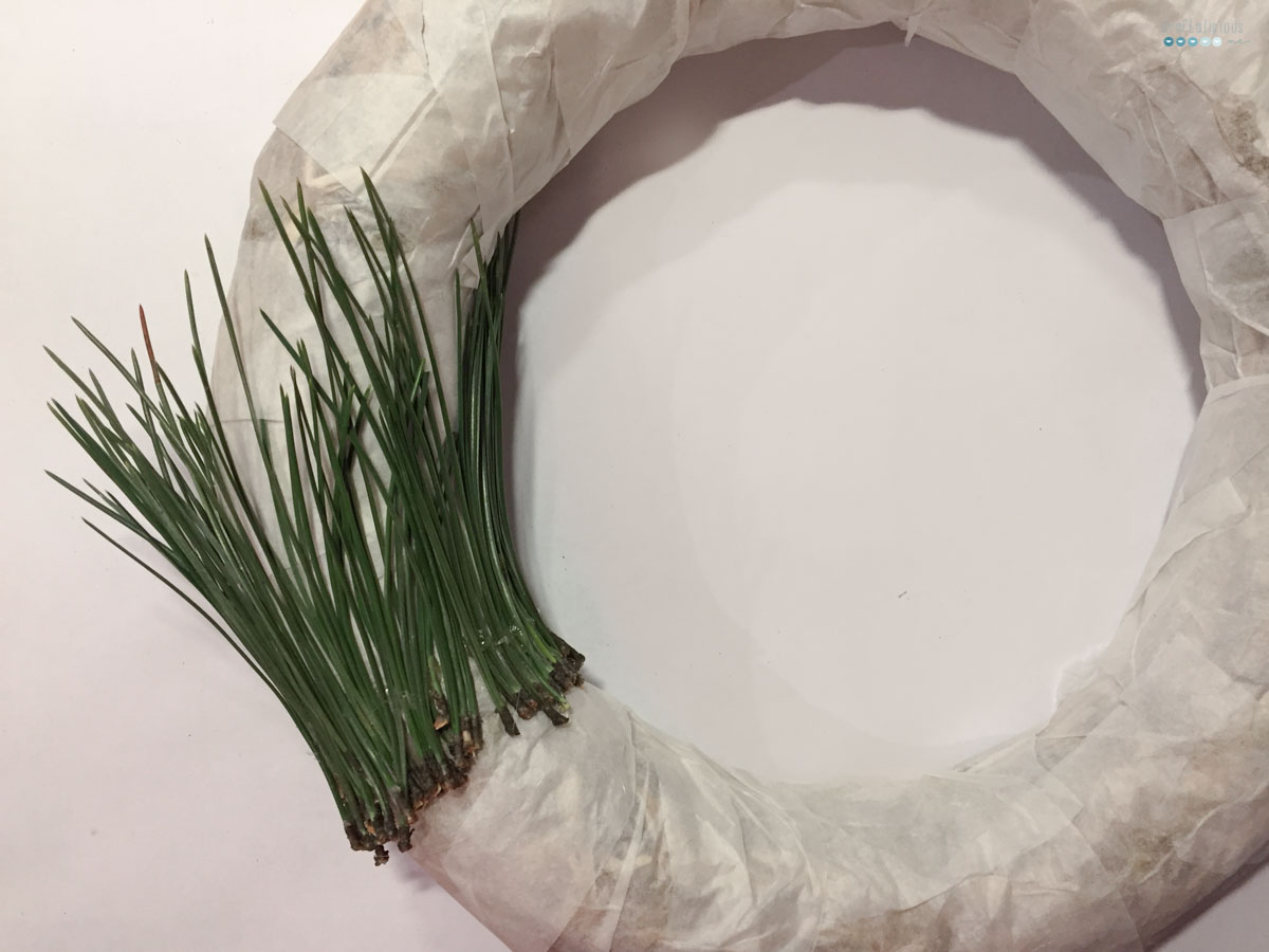 pine needle wreath | nadel adventskranz