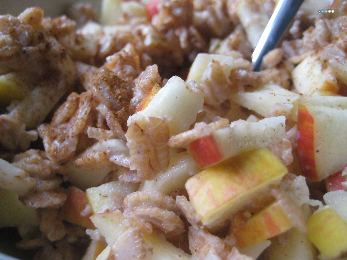 Fruity Warm Breakfast Oats apple