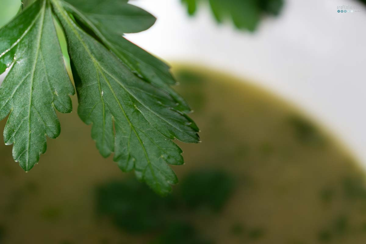 Grandmas Herb Soup detail