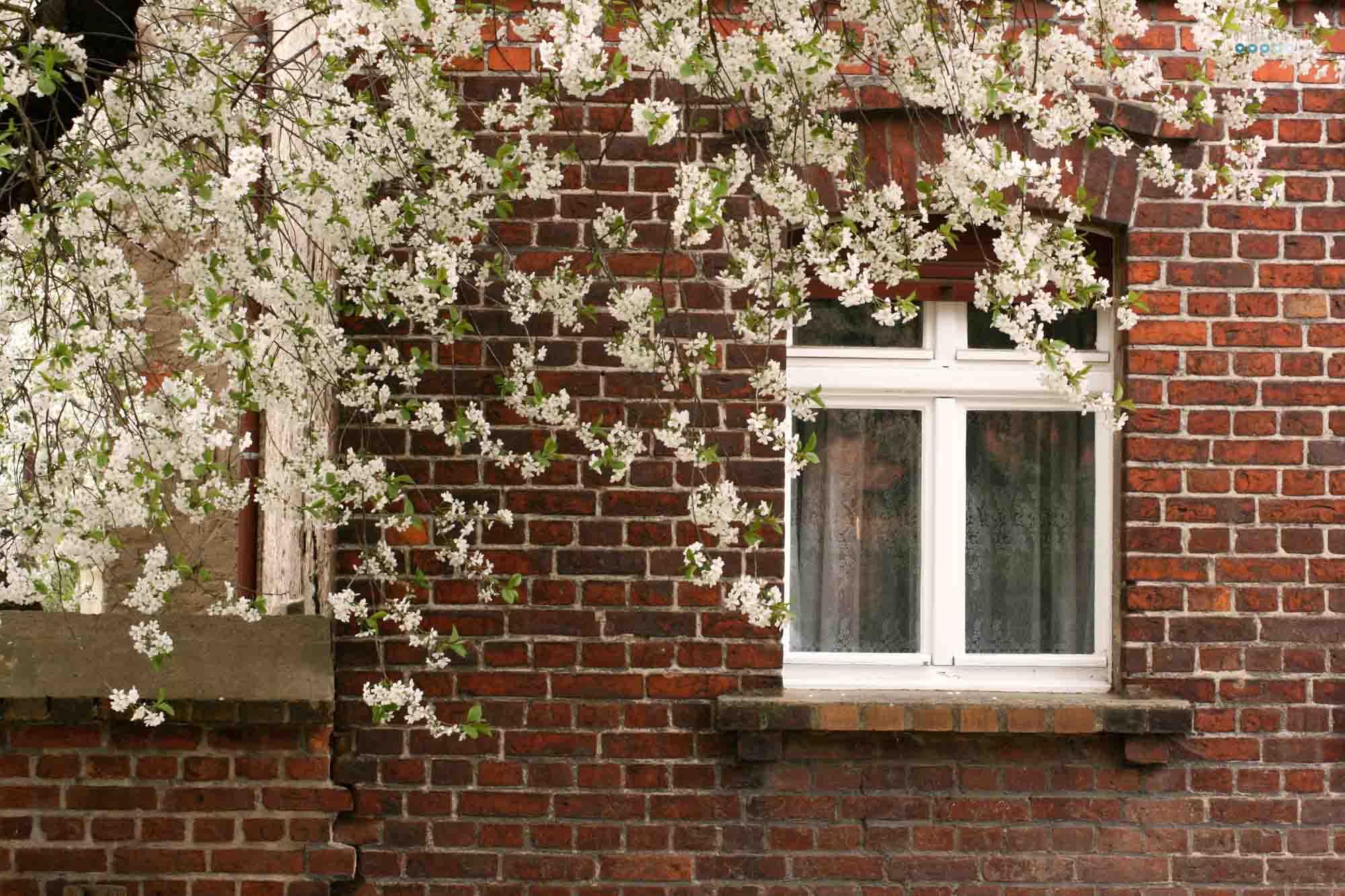 craftaliciousme seeking creative life 20 ideas when staying home