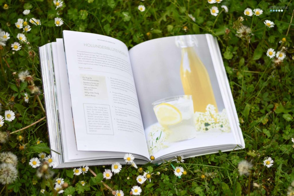 Gathering herbs and wild remedies Holundersirup