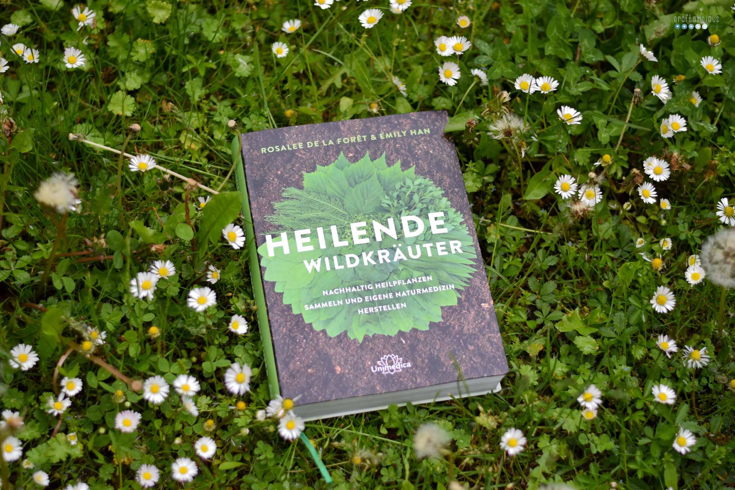 Gathering herbs and wild remedies cover Heilende Wildkräuter Rosalee de la Foret Emily Han